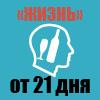 "Программа ""ТРЕЗВАЯ ЖИЗНЬ"""