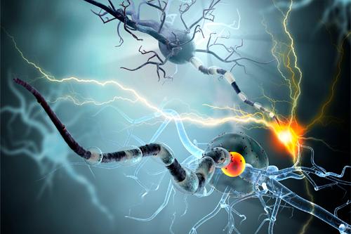 Нейродегенеративные нарушения - Кордия