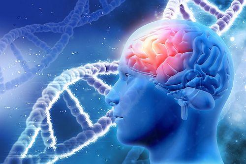 Генетическая предрасположенность - Кордия