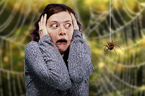 Неадекватный страх - Кордия